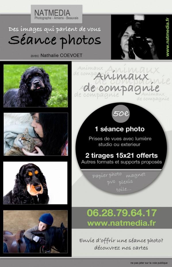Photo animaux